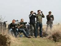 Apeldoornsvogelnet blogspot