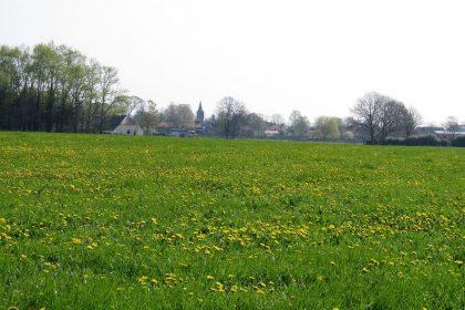 Uitzicht op Hall gemeente Brummen