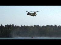 Chinook en Cougar (F1)
