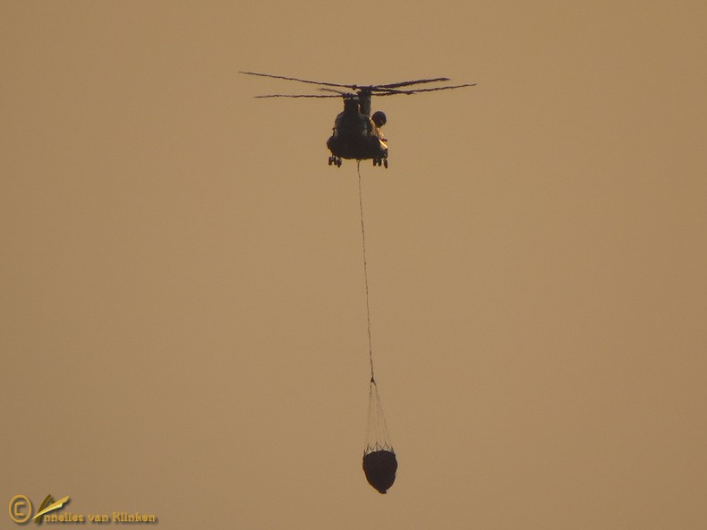 Cougar Transporthelicopter