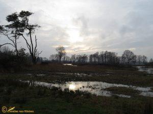 Empese en Tondense Heide