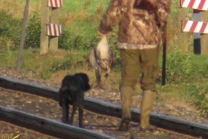 Jager met hond