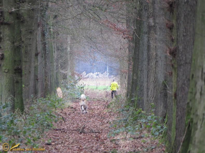 In de buurt van Huis Den Bosch in Leuvenheim